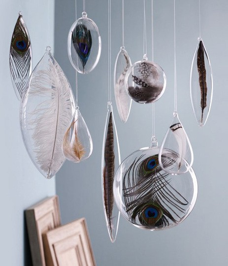 Collections ~ Feathers in Glass Globes