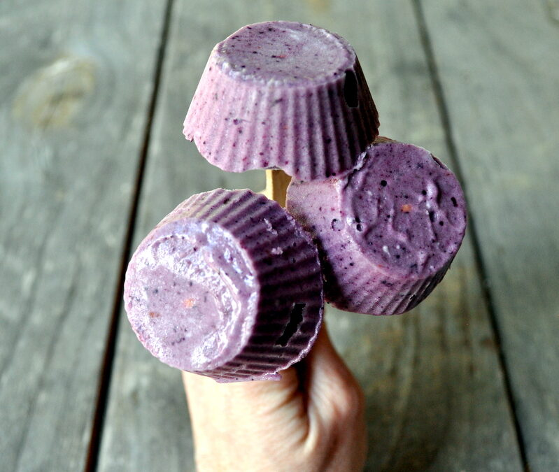 3 Ingredient Berry Ice-Cream Pops ~  {Paleo} {Dairy-Free} {Vegan}
