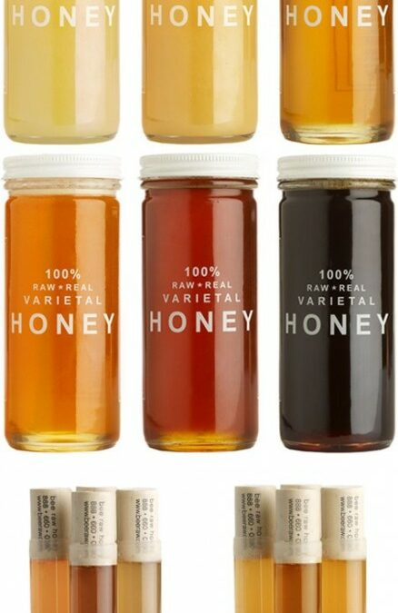 {Noms} Raw Varietal Honey